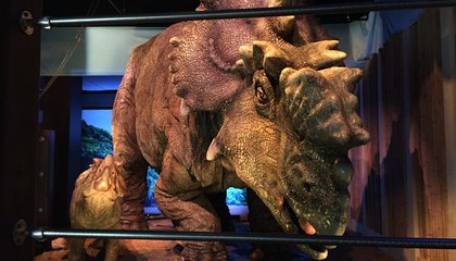 "Image: ""Jurassic World"" comes alive in Philadelphia"