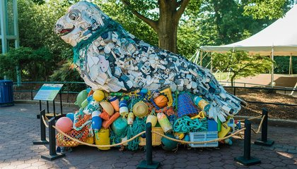 Image: There's a bunch of animals at the zoo made out of ocean garbage